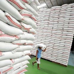 A worker carries a sack of rice at the National Food Authority warehouse in Quezon City, suburban Manila on July 27, 2010.  The Philippines, once the world's largest rice importer, is now overstocked with the grain and will sharply cut its importation, a senior government rice official said. Lito Banayo, recently-appointed head of the government's National Food Authority (NFA), said there had been excess importation of the grain and hinted that corruption may be involved. AFP PHOTO/NOEL CELIS