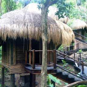 Rainforest Spa