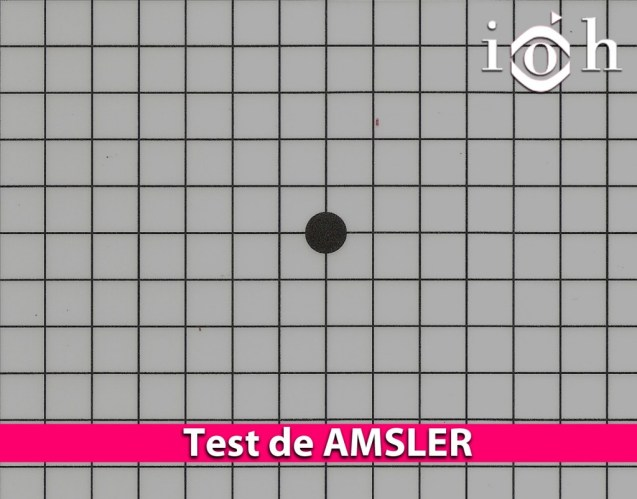Test de AMSLER