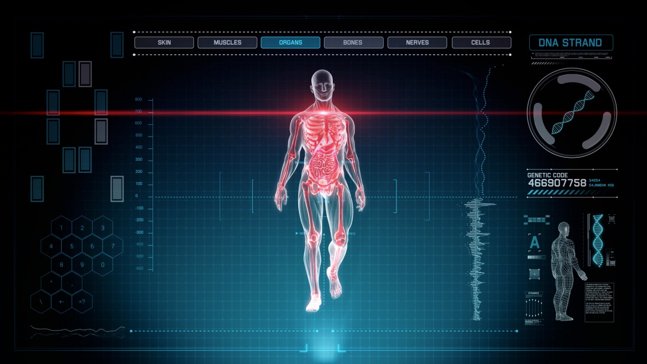 3d Hologram Wallpaper Gif Futuristic Interface Display Of Full Body Scan With Human