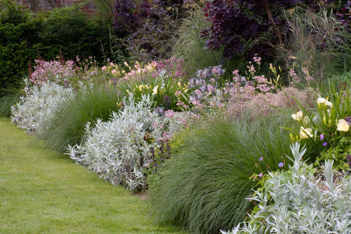 Winkel Tiger Oxfordshire Garden | Projects | Iona Hilleary Landscape