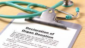 Declaration of organ donation on clipboard
