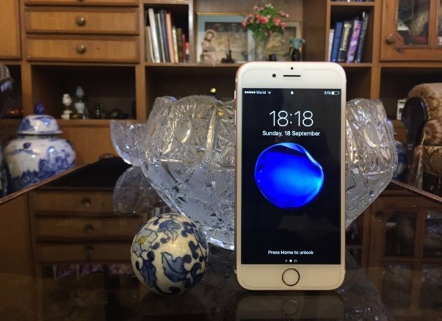 blob-fish-wallpaper-iphone-7