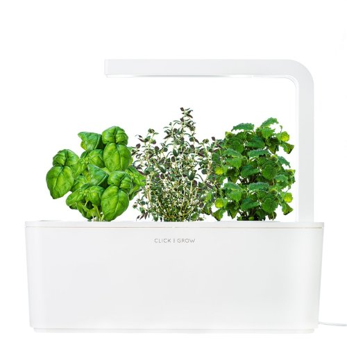 Click and Grow is a perfect example of Smart Herb Garden