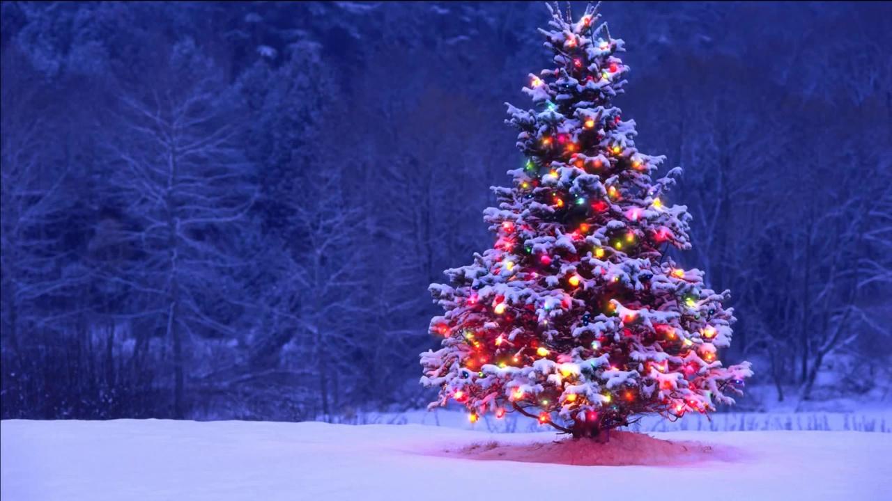 Animated Falling Snow Wallpaper Buy Animated Christmas Tree With Garland Video Christmas