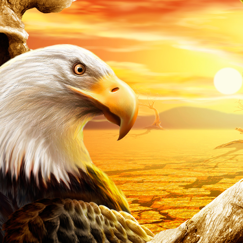 Angry Bird Space Wallpaper 3d Eagle Ipad Wallpaper Download Free Ipad Wallpapers