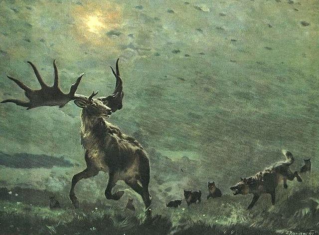 incontri donna the deer Barletta