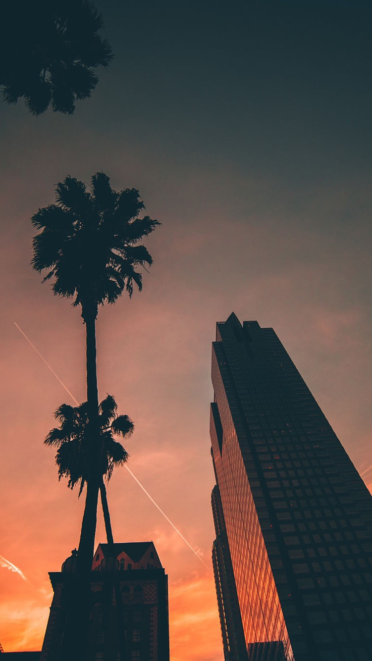 Cute Christmas Wallpapers For Iphone Miami Sunset Sky Buildings Iphone Wallpaper Iphone
