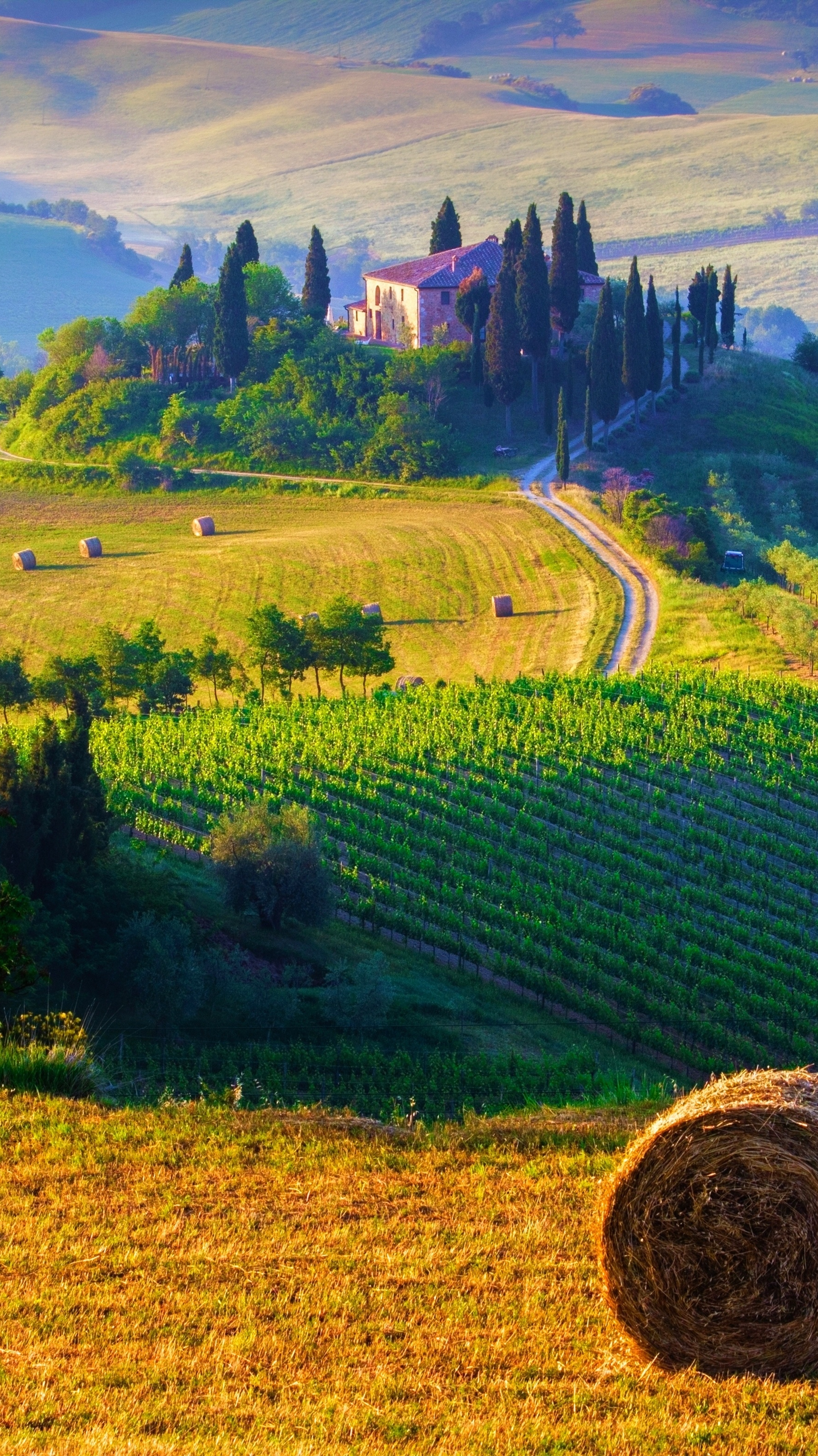 Amazing Wallpapers For Iphone 4 Tuscany Italy Landscape Iphone Wallpaper Iphone Wallpapers