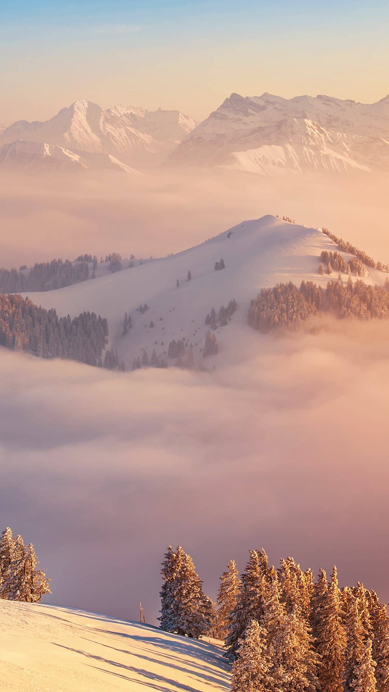 Animal Desktop Wallpaper Switzerland Mount Rigi Alps Clouds Iphone Wallpaper
