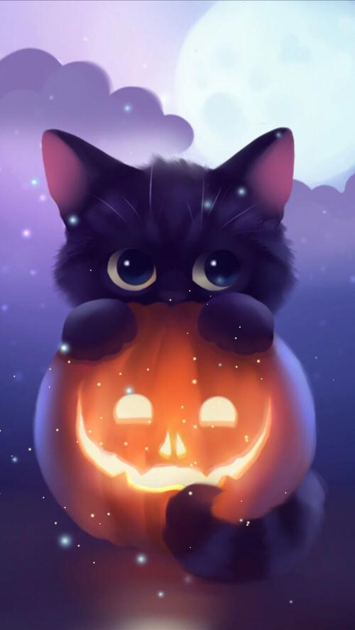 Fall Pumpkins Desktop Wallpaper Halloween Kitten Pumpkin Art Iphone Wallpaper Iphone