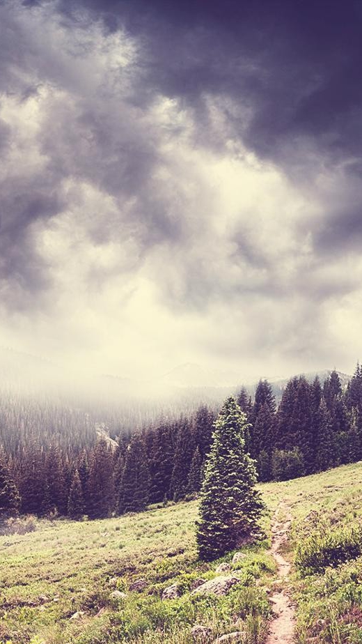 Anime Wallpaper Phone Quotes Dark Clouds Over Forest Nature Mountains Iphone Wallpaper