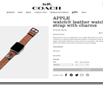 coach-leather-strap-charms[1]