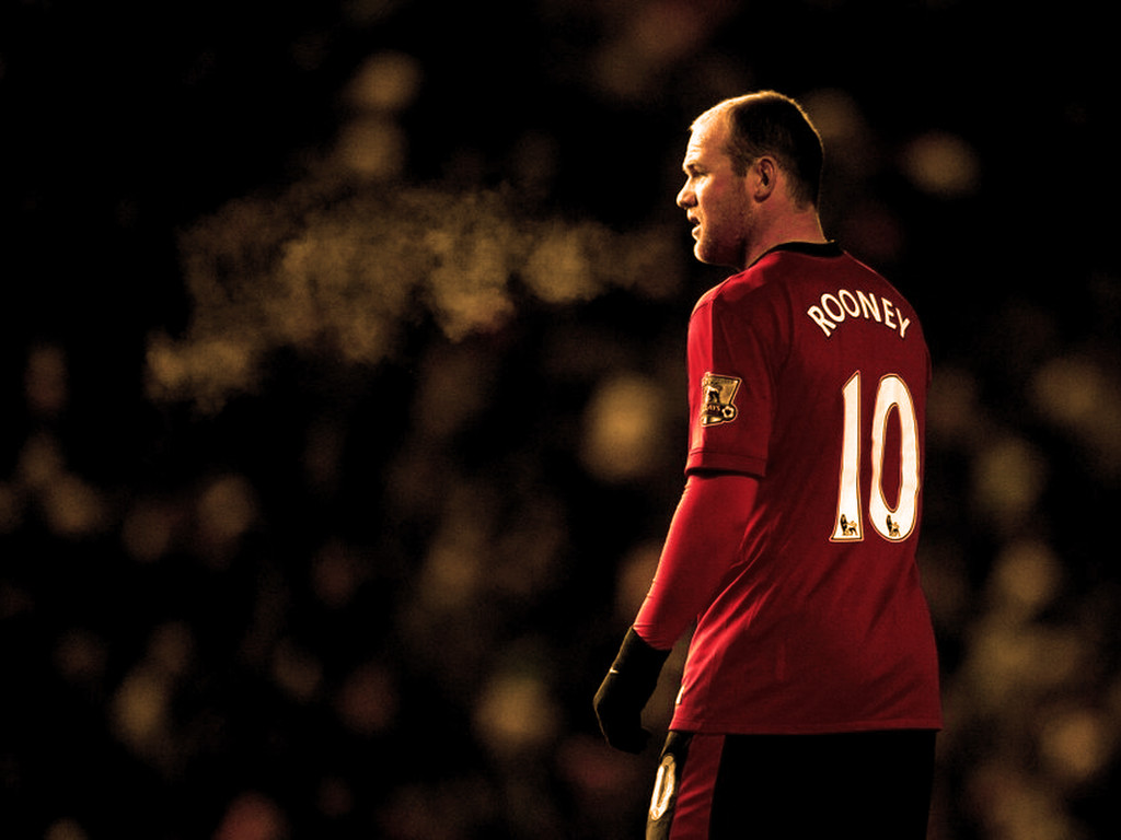 Cute Puppies Wallpapers With Quotes Wayne Rooney Manchester United Number 10 Image Picture Hd