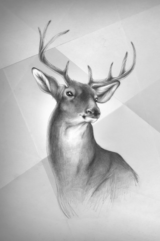 Girl Generation Images Wallpaper Deer Painting Iphone Wallpaper And Ipod Touch Wallpaper