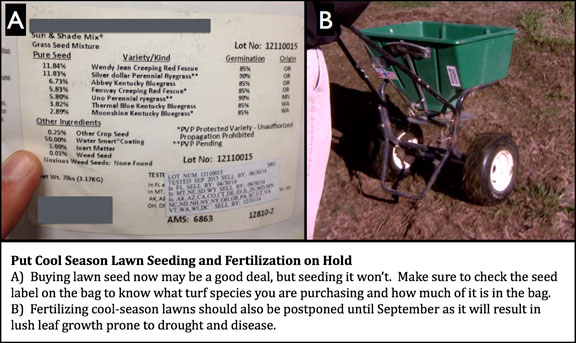 Seeding And Fertilizing Missouri Lawns // Missouri Environment And