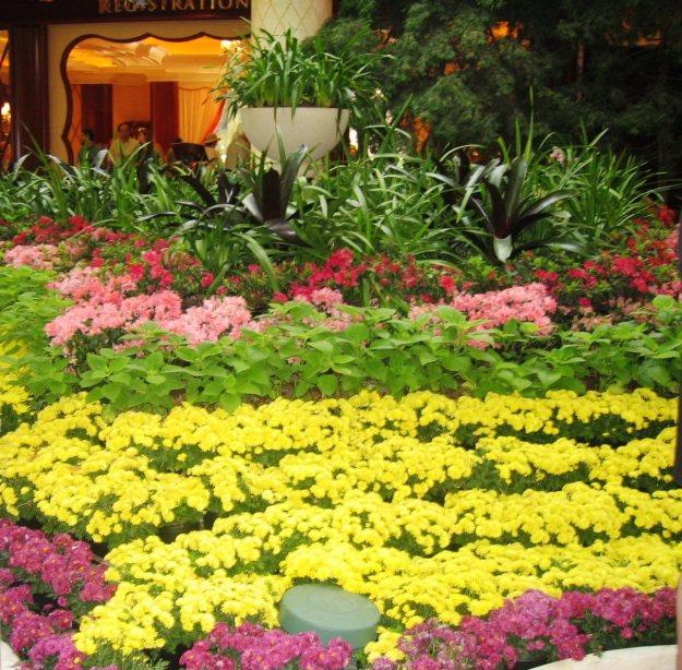 Wynn Las Vegas flowers