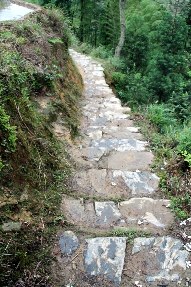steps of death Dragon's Backbone Rice Terraces, Longsheng China