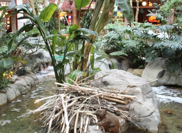 sams town atrium las vegas animatronic beaver