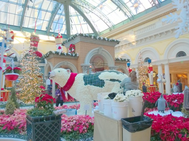 Bellagio conservatory Las Vegas sick bear