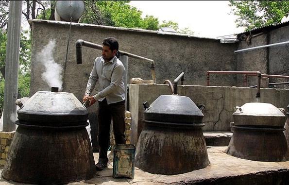Iran Visa - Rose Water in Meymand, Shiraz | Rose Water Season in Iran