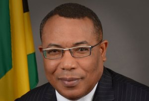 Unclaimed monies left in banks can be used to fund MSMEs-Hylton