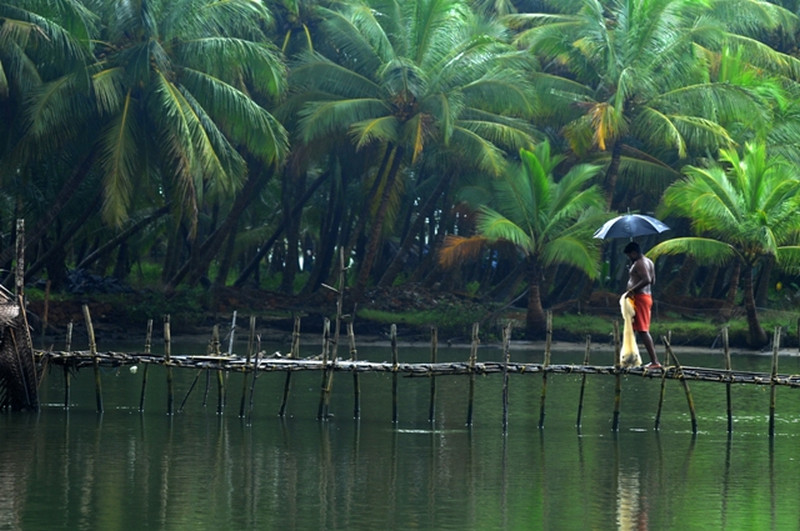 Cute Rainy Weather Wallpapers 30 Kerala Images That Will Make You Want To Visit Kerala