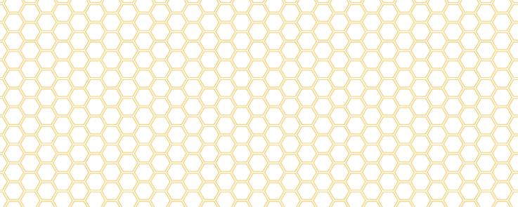 配布用黄金亀甲パターン