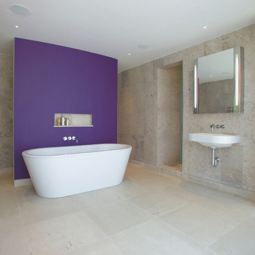 Pics Of Bathroom Designs Simple Bathroom Designs Iroonie