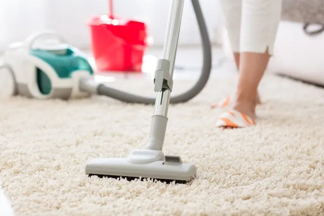Domestic Cleaning and Shopping Service - domestic cleaning agency