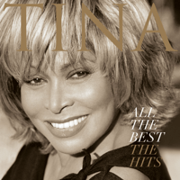 The Best Tina Turner