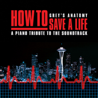 How to Save a Life Piano Tribute Players