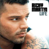 I Won't Desert You Ricky Martin MP3