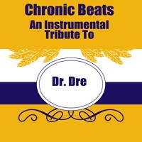 Still D.R.E. (Made Famous by Dr. Dre) Kind Hip Hop DJs