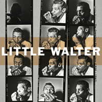 Blue and Lonesome Little Walter