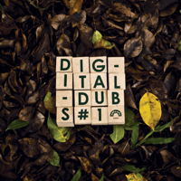 Fyah Bun Dem (feat. Ranking Joe) Digitaldubs
