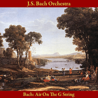 Air On the G String, from Orchestral Suite No. 3 in D Major, BWV 1068 J.S. Bach Orchestra