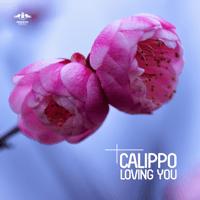 Loving You (Radio Mix) Calippo MP3