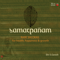 Introduction to Adi Shankaracharya's Shlokas of Track 19 & 20 Shri S Ganesh