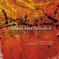 What a Little Moonlight Can Do Chicago Jazz Orchestra