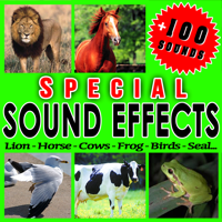 Frogs Sfx Professional Resource Studio MP3
