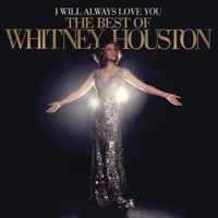Saving All My Love for You Whitney Houston