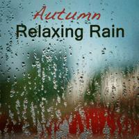 Rain Sound - Meditation Music Relaxing Sounds of Rain Music Club