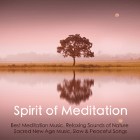 Namaste Meditation Music Guru