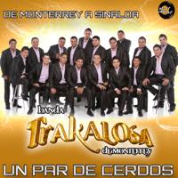 Un Par de Cerdos - Single Edwin Luna y La Trakalosa de Monterrey