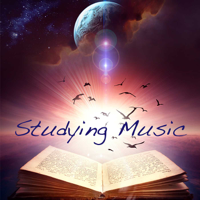 Soothing Music Studying Music Specialist