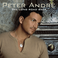 Mysterious Girl (Radio Edit) Peter Andre