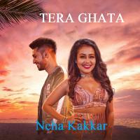 Tera Ghata Neha Kakkar MP3