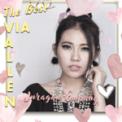 Free Download Via Vallen Juragan Empang Mp3