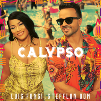 Calypso Luis Fonsi & Stefflon Don MP3